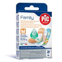 CER PIC FAMILY MIX 20PZ
